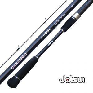 JATSUI-carango