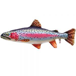 FLADEN-rainbow trout