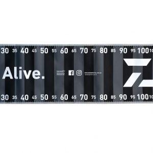 Daiwa-measure-mat